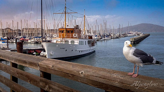 Pier 39 in San Francisco by Alpenglow Photography