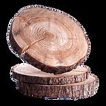 Log-Slices-3.png