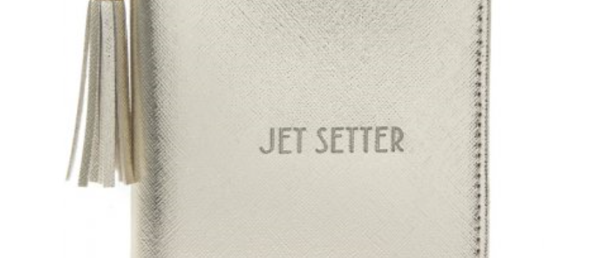 Jet Setter Metallic Passport Holder