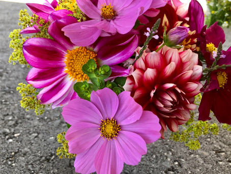 Blumen ab jetzt erhältlich