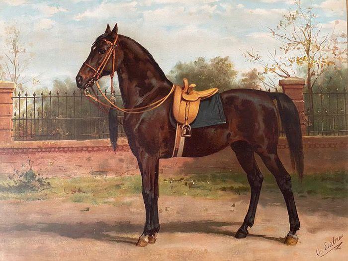 Otto Eerelman (ill.) & E.A.L. Quadekker (tekst), Paardenrassen. Kunstalbum van een en veertig afbeeldingen, 1898