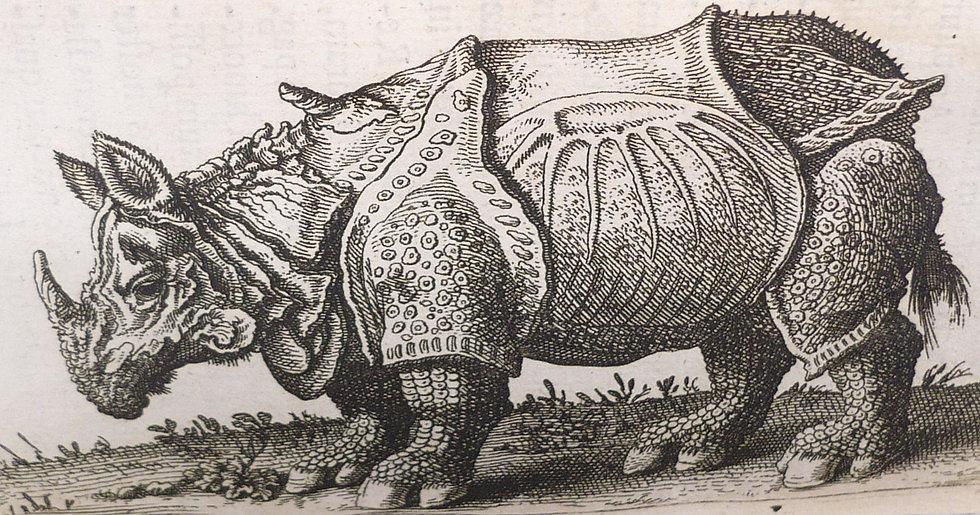 Bartholin,De UnicornuObservationes Novae. Secunda editione, 1678