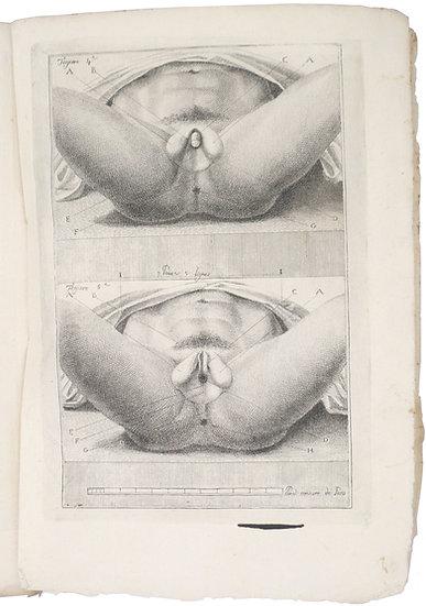 Jaqueline Foroni rendue a son veritable sexe, 1802