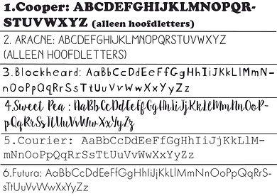 2020 Lettertype SNOEZY, 6 opties.jpg