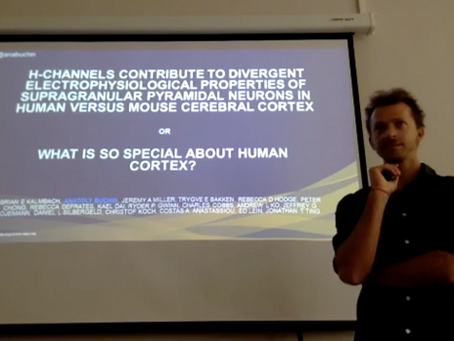 Lecture about comparing mouse and human neurons in Moscow