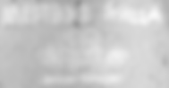 Screen Shot 2020-02-03 at 4.08.06 PM.png