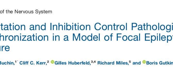 Epilepsy mean-field model is published