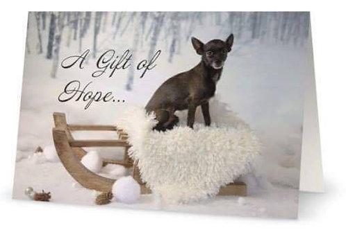 Charitable Gift Donation $20.00 – $500.00