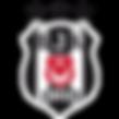 bjk_dls17_3_yıldızlı_wid10_logo_2.png