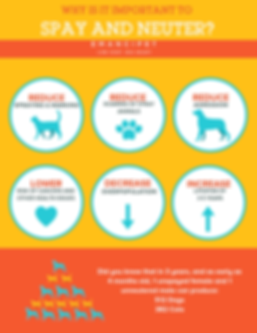 why-spay-and-neuter-3-791x1024_orig.png