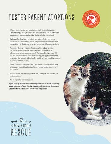 FHR_FosterParentAdoption_Poster2.jpg