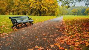 Fall is here!  YeeeeeHaaaaw!