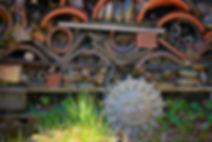gardensun.jpg