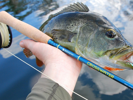 Redington CROSSWATER 590-4 Fly Rod and Reel Combo Review