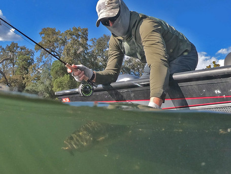Gearing Up: Fly Fishing for Bass