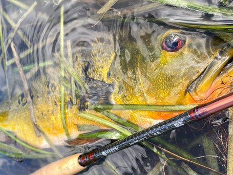 Hardy Ultralite X 5-Weight Fly Rod Review
