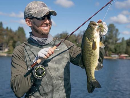 The Basics of Fall Bass Fishing