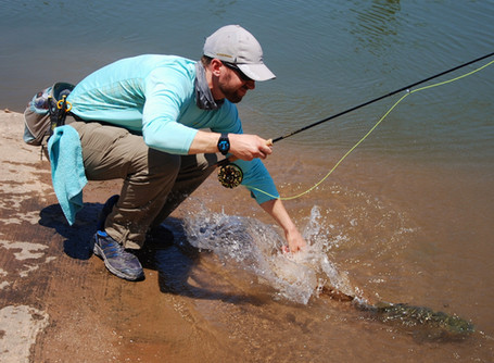Refine Your Catch and Release: Ideas on How to Land and Handle Fish Safely