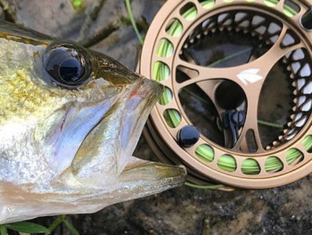 Sage CLICK 0/1/2 Fly Reel Review