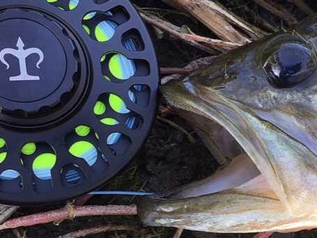3-TAND TF-40 Fly Reel Review