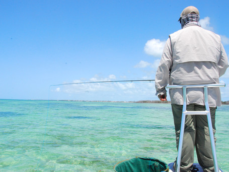 First Guided Saltwater Fly Fishing Trip? Practice the Cast!