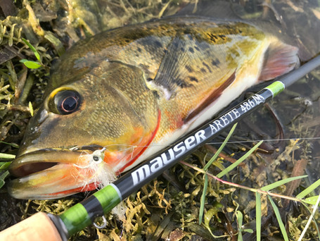 Mauser Arete 4 Weight Fly Rod Review