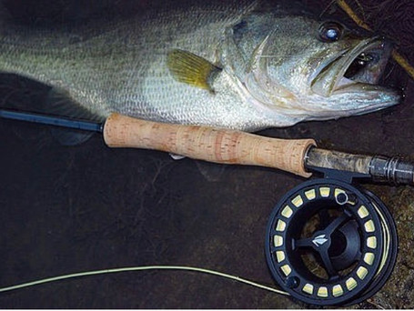 Sage 2250 5/6 Fly Reel Review