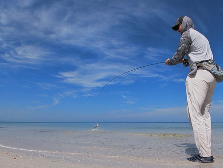 Tips to Help Choose Your First Saltwater Fly Rod