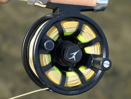 ECHO ION 2/3 Fly Reel Review