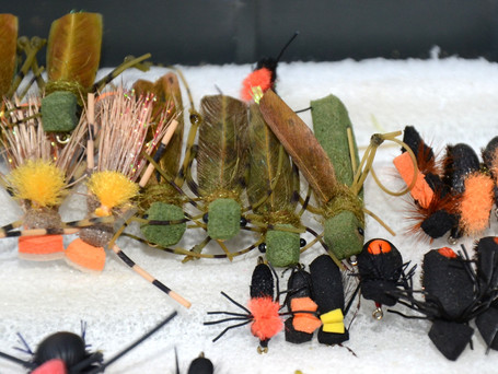 3 Facts About Fishing With Terrestrial Dry Flies