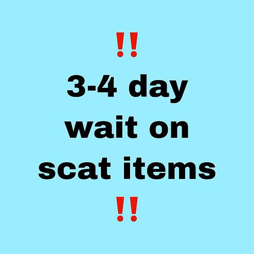 Schedule update: 3-4 days of wait