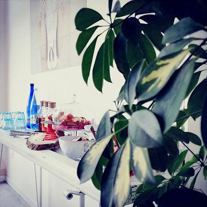 Buffet di colazione con succhi, bicchieri, acqua, brioches, frutta fresca, mozzarella e pomodori, con una pianta in parte e decorazione sul muro.