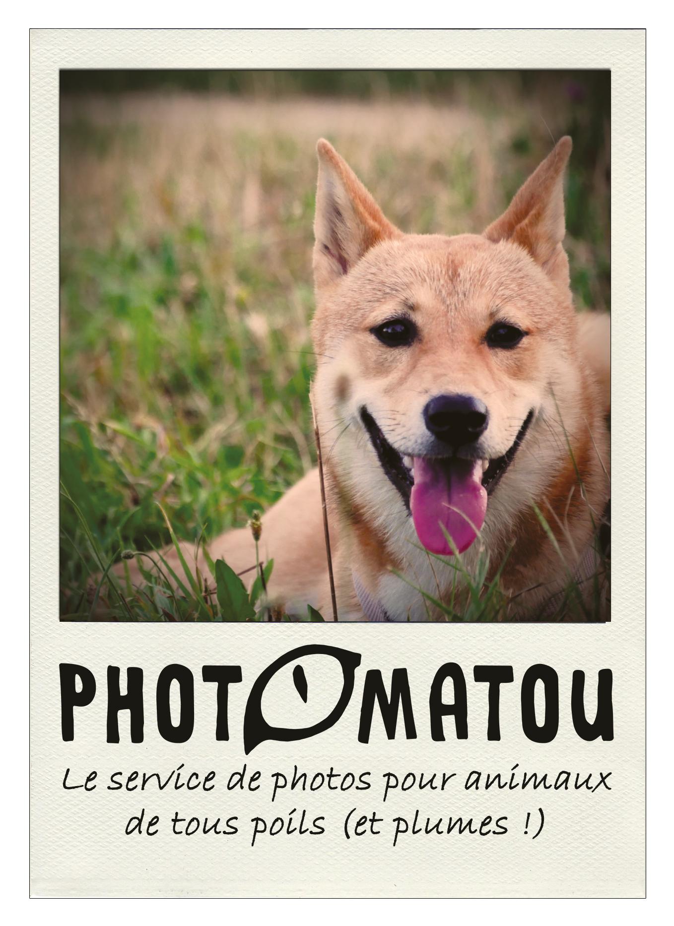 Flyer RECTO PHOTOMATOU