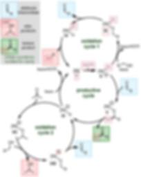 carbonyl-Heck.JPG