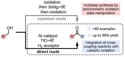 2019 Verheyen - Oxidative carbonyl Heck.