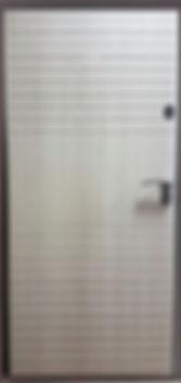 Стальная дверь Ергак 202/1