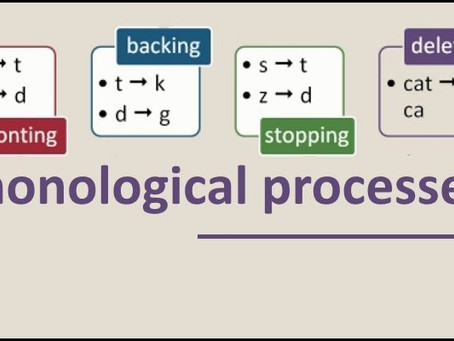 What are Phonological Processes?