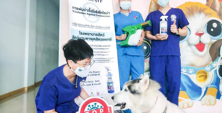 มาตรการ COVID -19 โรงพยาบาลสัตว์มาบตาพุดสัตวแพทย์