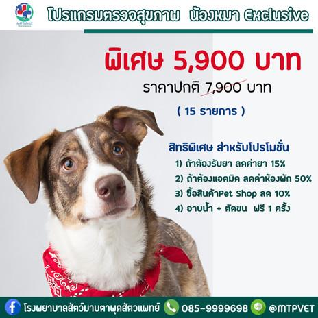 โปรแกรมตรวจสุขภาพ น้องหมา Exclusive โรงพยาบาลสัตว์มาบตาพุดสัตวแพทย์ เปิด 24 ชม.