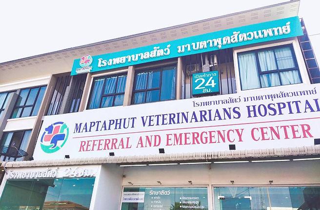 โรงพยาบาลสัตว์มาบตาพุดสัตวแพทย์ เปิดบริการ 24ชม.