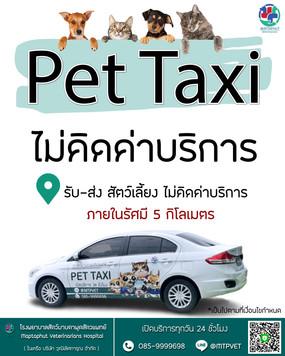 pet-taxi-รับส่งฟรีภายใน5กม.jpg