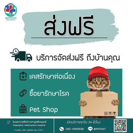 ส่งยา-Petshop-ฟรี-2.jpg