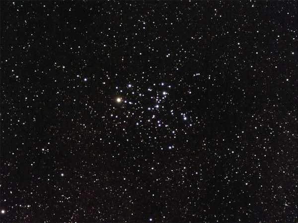 M-6 - Butterfly Cluster