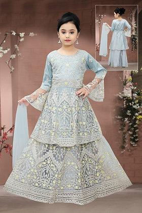 Blue-Gray Silk Choli Lehnga