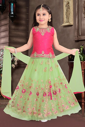 Pink and Green Lehnga Choli