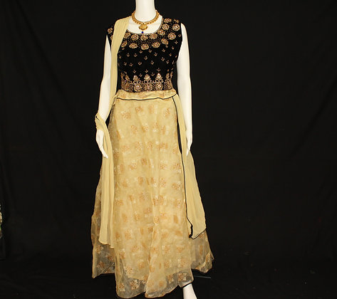 Gold and Black-Ready to wear Crop Top