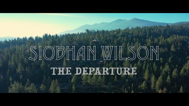 SIOBHAN WILSON - THE DEPARTURE