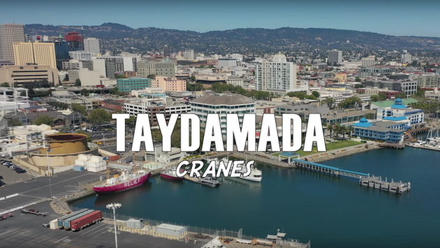 TAYDAMADA - CRANES [MUSIC VIDEO]