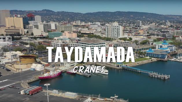 Taydamada - Cranes [MUSIC VIDEO]