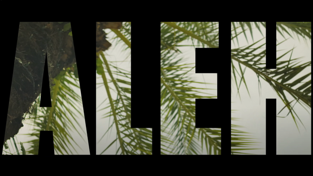 TAL VAKNIN - ALEH [MUSIC VIDEO]